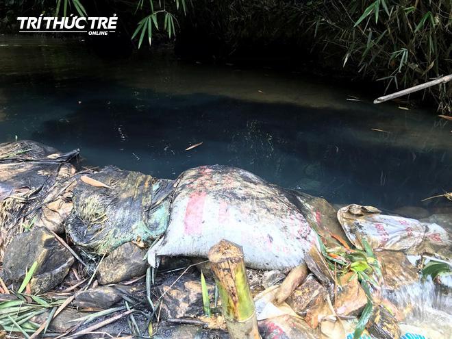 Dòng suối đầu nguồn nhà máy nước sông Đà: Dầu thải đặc quánh, đổ qua phễu to cũng không chảy được - Ảnh 10.