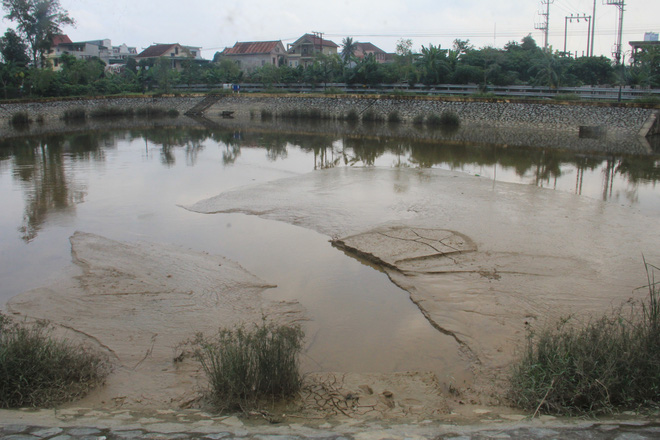 Phát hiện nhà máy nước xả bùn thải phủ kín mặt hồ điều hòa ở Nghệ An - Ảnh 1.