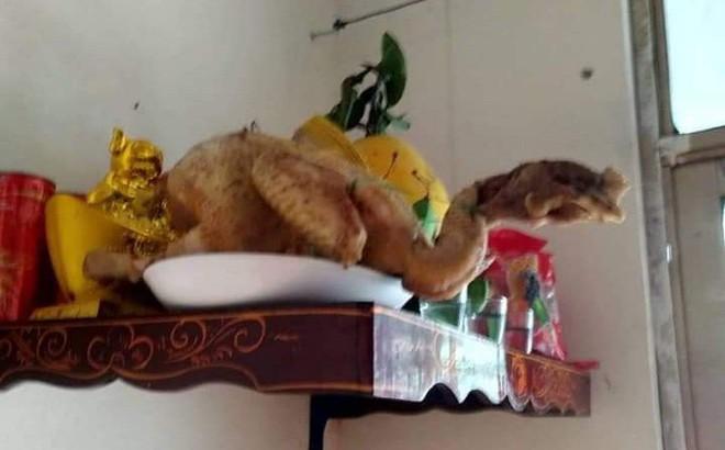 Sang nhà bạn chơi, thanh niên giật mình vì con gà cúng dị dạng trên bàn thờ
