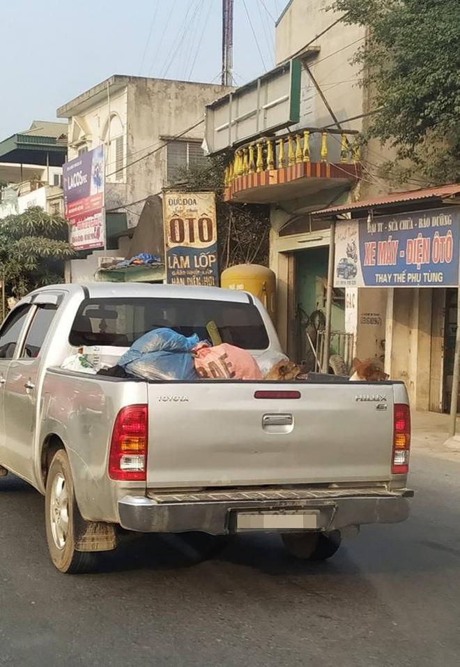 Chuyến xe chở cả quê hương quay lại thành phố sau Tết khiến nhiều người bật cười - ảnh 5