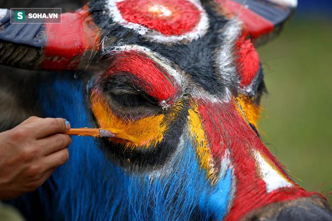 Phó Thủ tướng mặc áo nâu xuống ruộng dắt trâu đi cày ở lễ hội Tịch Điền - Ảnh 5.