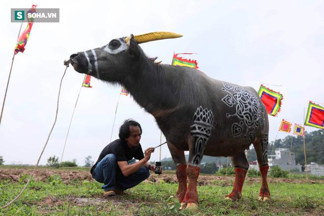 Phó Thủ tướng mặc áo nâu xuống ruộng dắt trâu đi cày ở lễ hội Tịch Điền - Ảnh 4.