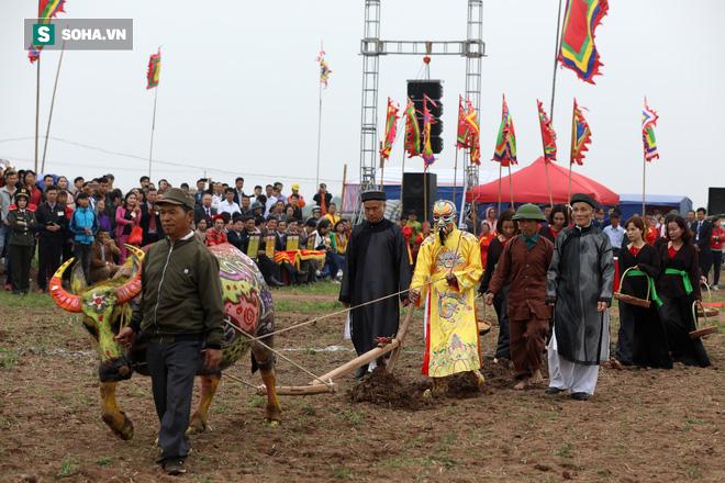 Phó Thủ tướng mặc áo nâu xuống ruộng dắt trâu đi cày ở lễ hội Tịch Điền - Ảnh 9.