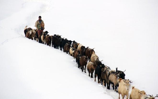 24h qua ảnh: Binh sĩ Trung Quốc đứng gác dưới mưa tuyết lạnh giá - Ảnh 3.