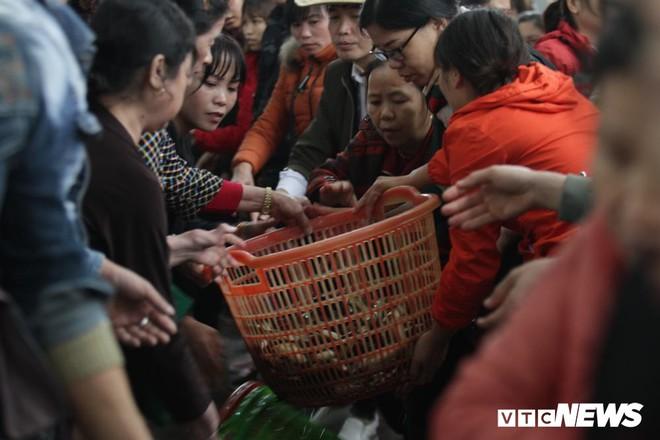 Ảnh: 15.000 người tham gia thả 10 tấn cá xuống sông Hồng trong lễ phóng sinh lớn nhất Hà Nội - Ảnh 4.