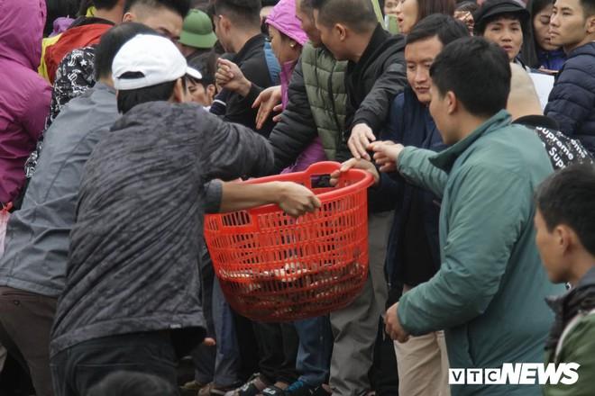 Ảnh: 15.000 người tham gia thả 10 tấn cá xuống sông Hồng trong lễ phóng sinh lớn nhất Hà Nội - Ảnh 5.