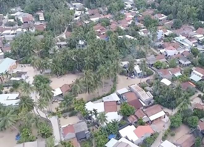 Mưu sinh trên những ngọn dừa ở đảo dừa Tam Hải - Ảnh 2.