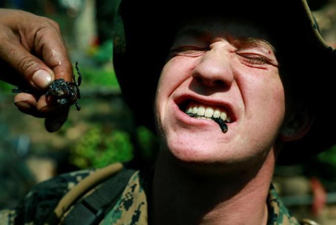 Lính Mỹ uống máu rắn hổ mang, nhai bọ cạp sống để sinh tồn - ảnh 7