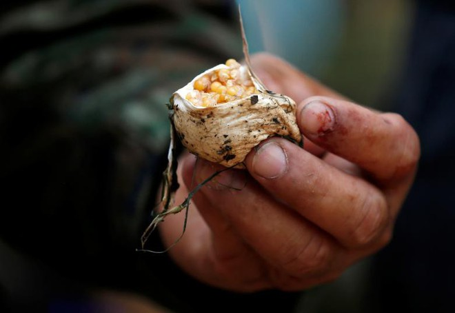 Lính Mỹ uống máu rắn hổ mang, nhai bọ cạp sống để sinh tồn - ảnh 9