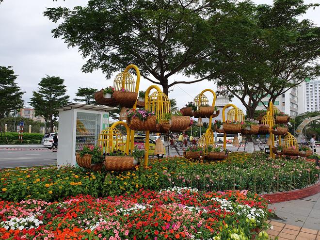 Cầu Vàng đọ dáng cầu Rồng ở đường hoa bên bờ sông Hàn  - Ảnh 7.