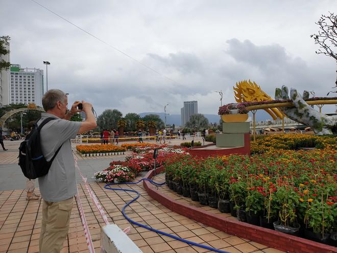 Cầu Vàng đọ dáng cầu Rồng ở đường hoa bên bờ sông Hàn  - Ảnh 12.