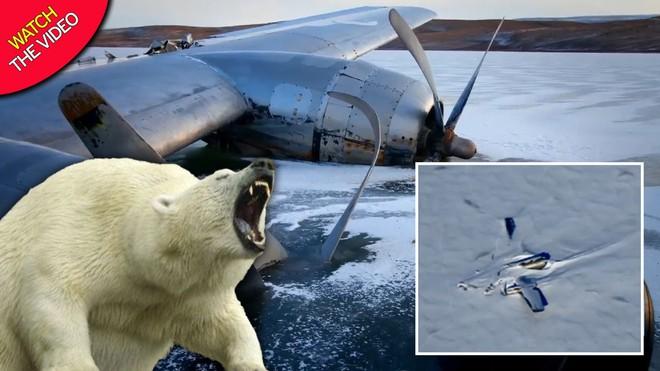 """NASA: Máy bay bí ẩn rơi ở Bắc Cực, nhưng """"số phận"""" của người sống sót còn đáng sợ hơn - Ảnh 2."""