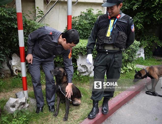 [Ảnh] 3 chú khuyển đặc biệt kiểm tra khách sạn Melia trước ngày Chủ tịch Kim Jong-Un đến Việt Nam - Ảnh 10.