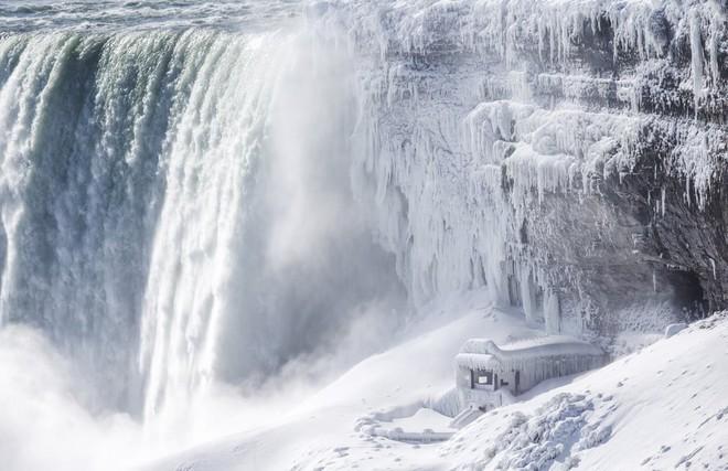 7 ngày qua ảnh: Người Nga tắm nước đá băng giữa trời tuyết trắng - Ảnh 9.