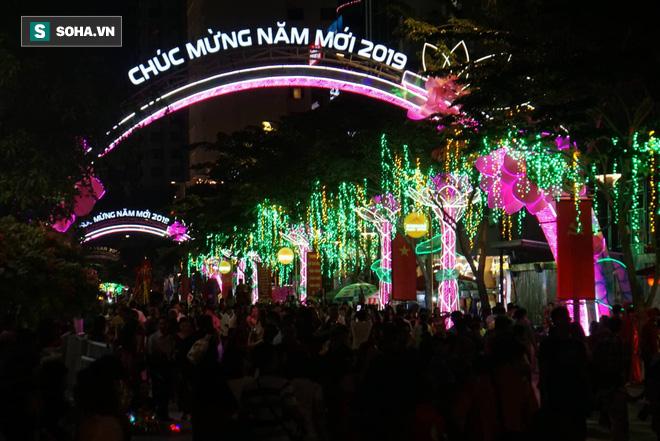 Người Sài Gòn đổ về trung tâm chờ xem pháo hoa đón giao thừa Tết Kỷ Hợi 2019 - Ảnh 6.