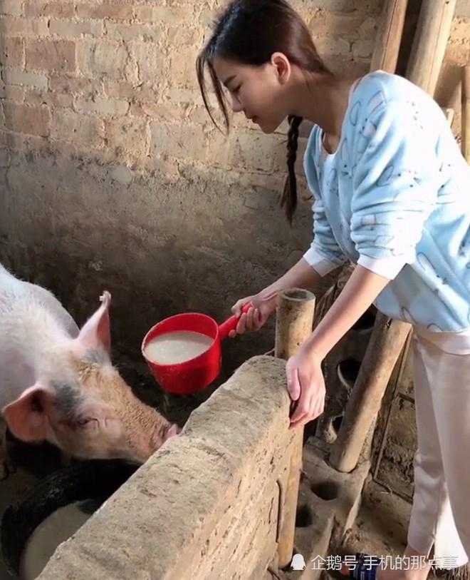 Hotgirl cho lợn ăn dù xinh vẫn bị dân mạng ném đá không thương tiếc vì làm màu - Ảnh 5.