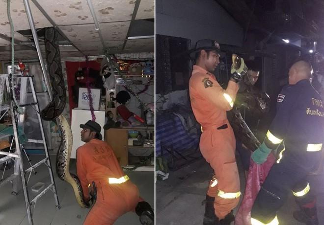 24h qua ảnh: Bắt trăn quái vật to khủng khiếp trên mái nhà Thái Lan - Ảnh 2.