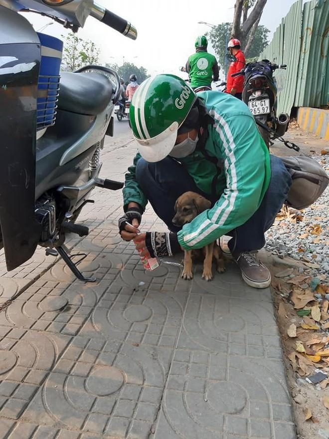 Ánh mắt ám ảnh của chú cún trơ xương nằm bên đường và hành động 'nghìn like' của tài xế Grab - ảnh 2