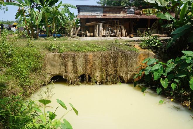 Người dân Đà Nẵng hoảng hốt khi nước kênh trắng như sữa, nồng nặc mùi thuốc trừ sâu - Ảnh 2.