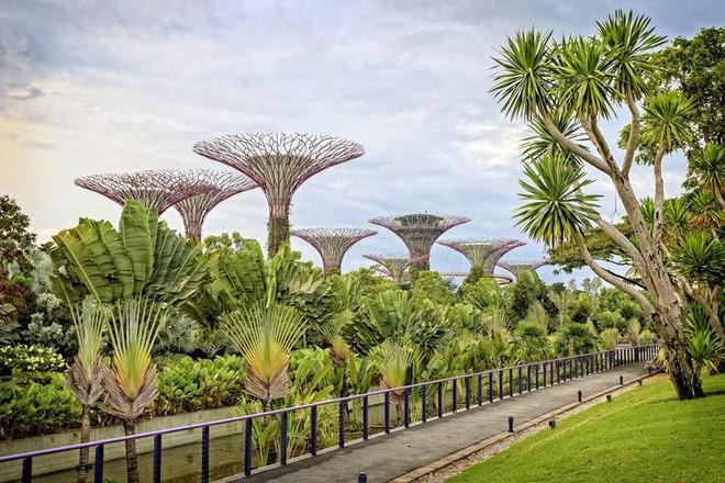 4 điều thú vị chỉ có ở Singapore khiến du khách đi hoài, đi mãi cũng không biết chán - Ảnh 1.