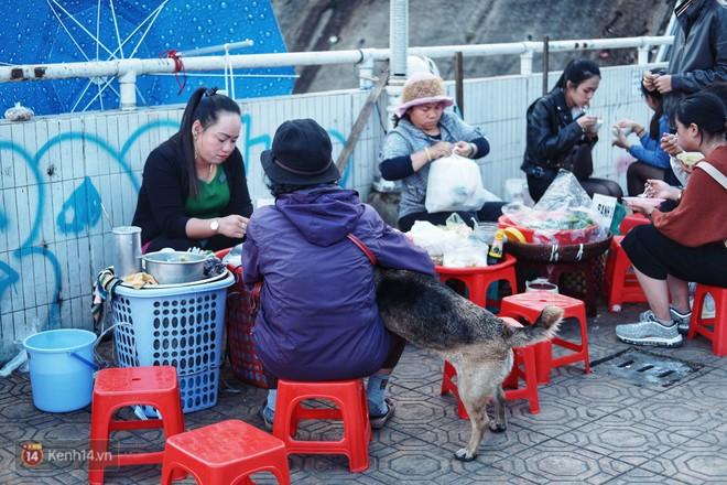 Câu chuyện đáng yêu của người phụ nữ bán vé số và chú chó lang thang ở Đà Lạt - Ảnh 1.