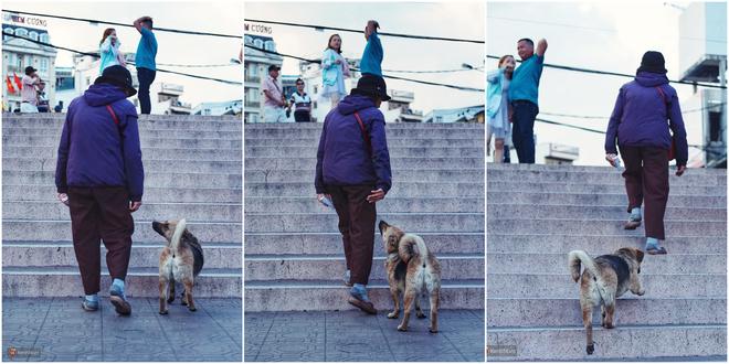 Câu chuyện đáng yêu của người phụ nữ bán vé số và chú chó lang thang ở Đà Lạt - Ảnh 8.