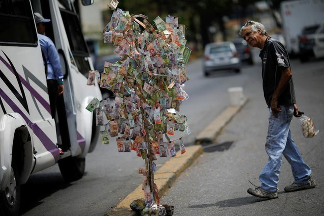 24h qua ảnh: Tiền thật được dùng làm cây giả trên đường phố Venezuela - Ảnh 4.