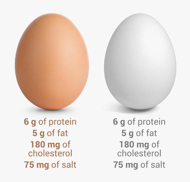 8 điều hiểu lầm khiến nhiều người tưởng trứng không tốt mà kiêng không dám ăn - Ảnh 3.