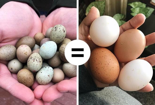 8 điều hiểu lầm khiến nhiều người tưởng trứng không tốt mà kiêng không dám ăn - Ảnh 7.