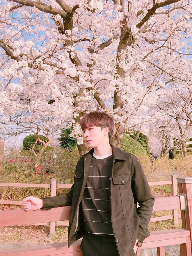 Chàng du học sinh Việt với nhan sắc cực phẩm giống hệt Lee Min Ho, được chính người Hàn trầm trồ vì quá đẹp trai - Ảnh 4.