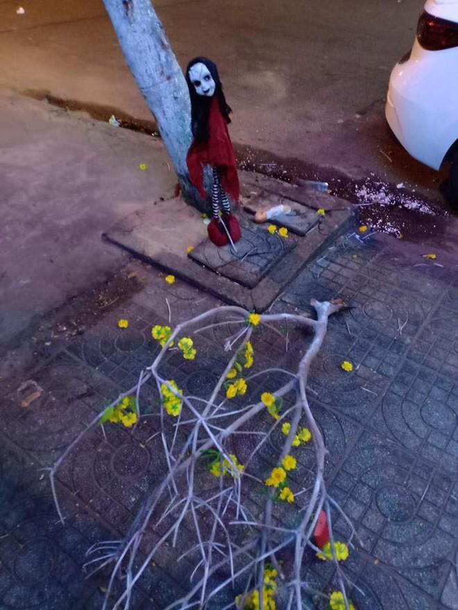 Nửa đêm ra đường, chàng trai đứng hình khi thấy vật thể lạ lơ lửng trên cây  - Ảnh 2.
