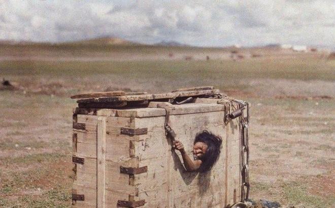 Người phụ nữ bị nhốt trong cũi giữa sa mạc đến chết vì đói khát và câu chuyện đầy ám ảnh sau bức ảnh khiến cả thế giới rùng mình