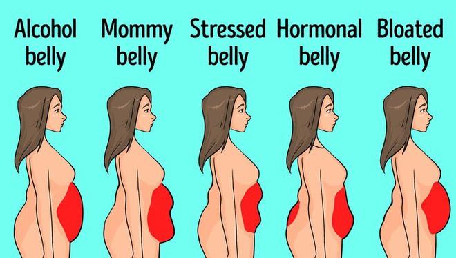 Ai cũng vật lộn với việc giảm mỡ bụng nhưng đa số đều thất bại: Đây chính là lý do - ảnh 2