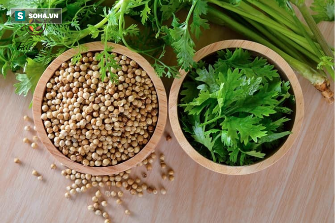 Tác dụng thần kỳ của rau mùi tây: Đặc biệt tốt như thuốc tự nhiên nếu dùng theo cách này - Ảnh 1.