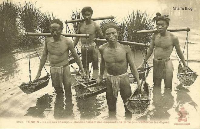 Một cổ hai tròng: Nông dân Việt Nam khốn khổ cả vì phong kiến lẫn thực dân - Ảnh 2.