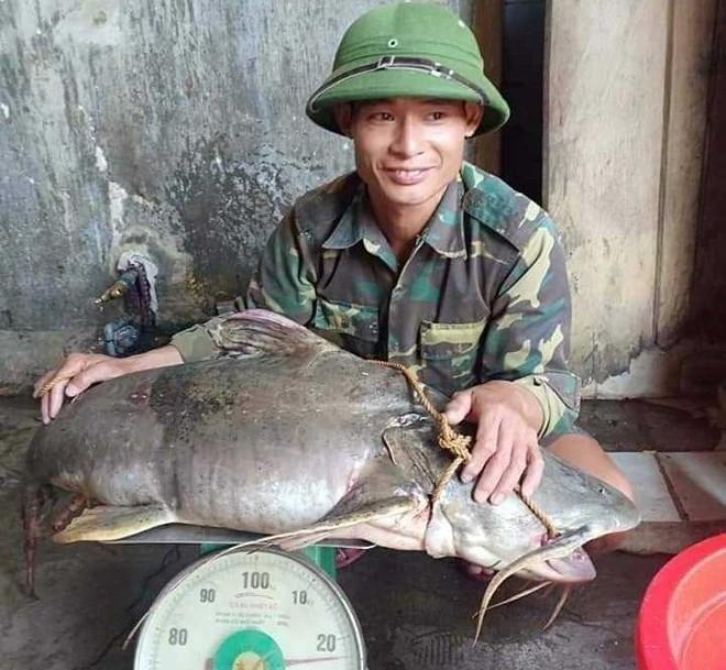 Bắt được thủy quái khủng trên sông nặng hơn 20kg, bán giá gần 7 triệu đồng - Ảnh 1.