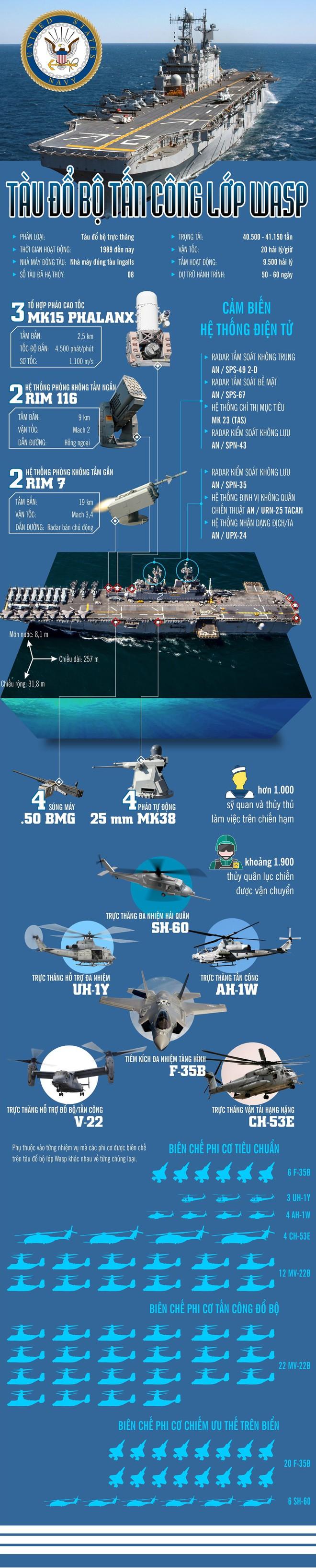 Tàu đổ bộ tấn công lớp Wasp mạnh như thế nào? - Ảnh 1.