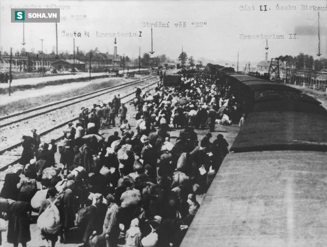 Gốc rễ tội ác tàn sát triệu người Do Thái của Hitler: Ám ảnh nhân loại khôn nguôi - ảnh 3