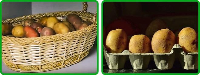 15 mẹo cực hay giữ cho trái cây và rau củ tươi lâu và không bị mất chất dinh dưỡng,cườm ủi