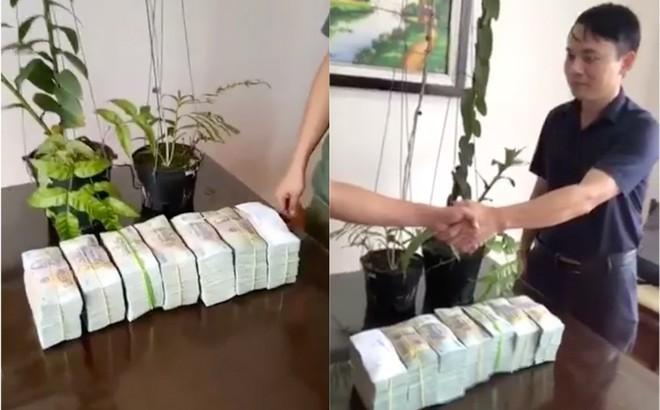 Chủ nhân mua cây lan 3,5 tỷ đồng gây xôn xao tiết lộ mục đích mua