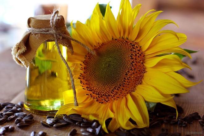 3 lý do dầu hướng dương là loại dầu ăn cần có trong mọi gia đình - Ảnh 2.
