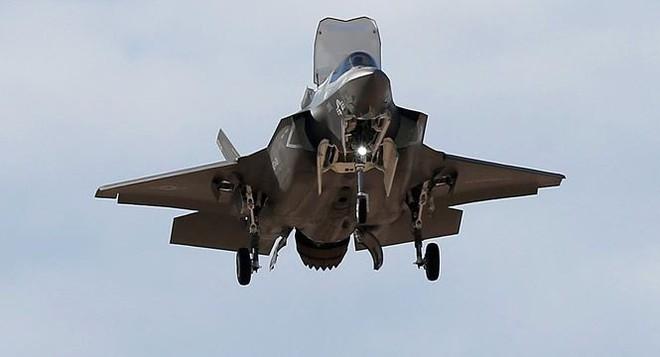 Tiêm kích F-35B đâm vào chim khiến Mỹ thiệt hại hàng triệu USD - Ảnh 1.
