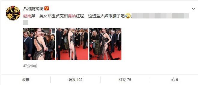 Phản ứng bất ngờ của dân mạng xứ Trung trước trang phục kiệm vải của Ngọc Trinh tại Cannes - Ảnh 4.