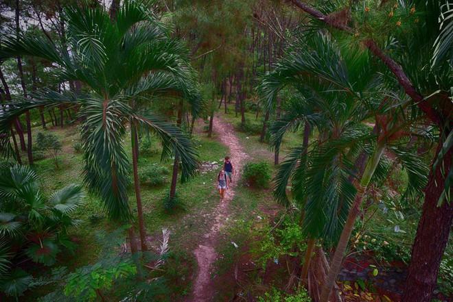 """Công viên nước bị bỏ hoang ở Huế bỗng dưng """"hot"""" trở lại sau 15 năm: Bí ẩn """"ma mị"""" mãi vẫn chưa có lời giải đáp - Ảnh 8."""