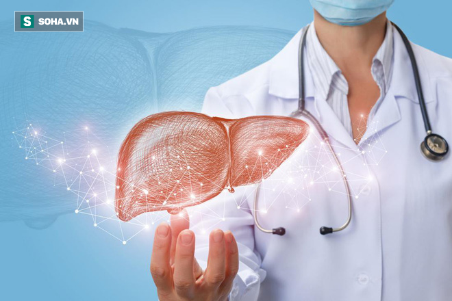 BS ung bướu: Đây là những việc bạn có thể làm để ngăn ngừa ung thư gan, rất nên tuân thủ - Ảnh 1.