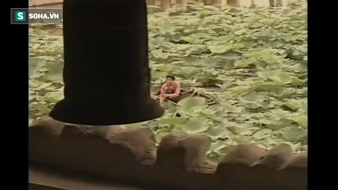 Đẳng cấp diva Hồng Nhung: 20 năm trước, đã làm nổi điều cả showbiz không thể - Ảnh 10.