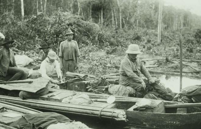 Loài người thực sự nợ cá Piranha khét tiếng Amazon một lời xin lỗi: Chúng đáng sợ là do con người - ảnh 3