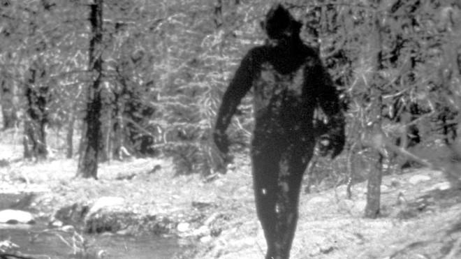 Người đàn ông gửi lông Bigfoot cho FBI đòi phân tích, 40 năm sau mới nhận được đáp án lúc gần đất xa trời - Ảnh 4.