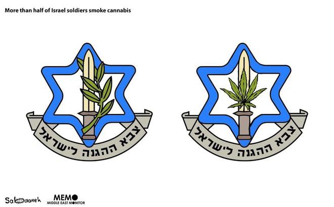 Không phải Iran, Hezbollah hay Hamas: Đây mới là kẻ địch đánh quỵ quân đội Israel? - Ảnh 1.