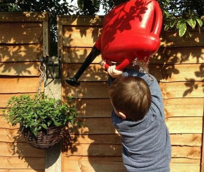 Khoảnh khắc ngay trước khi cậu bé nhận ra mình đã cầm sai chiếc bình nước tưới cây